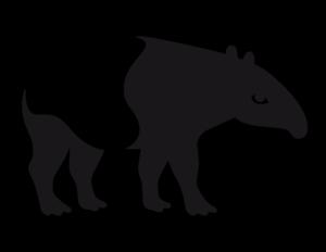 Wir ko-produzieren erstmals mit Tapir Filmatelier