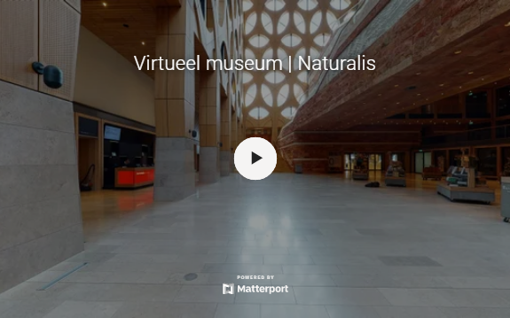 Virtueel museum
