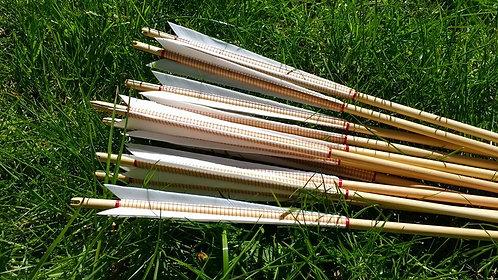 Deluxe Target Arrows