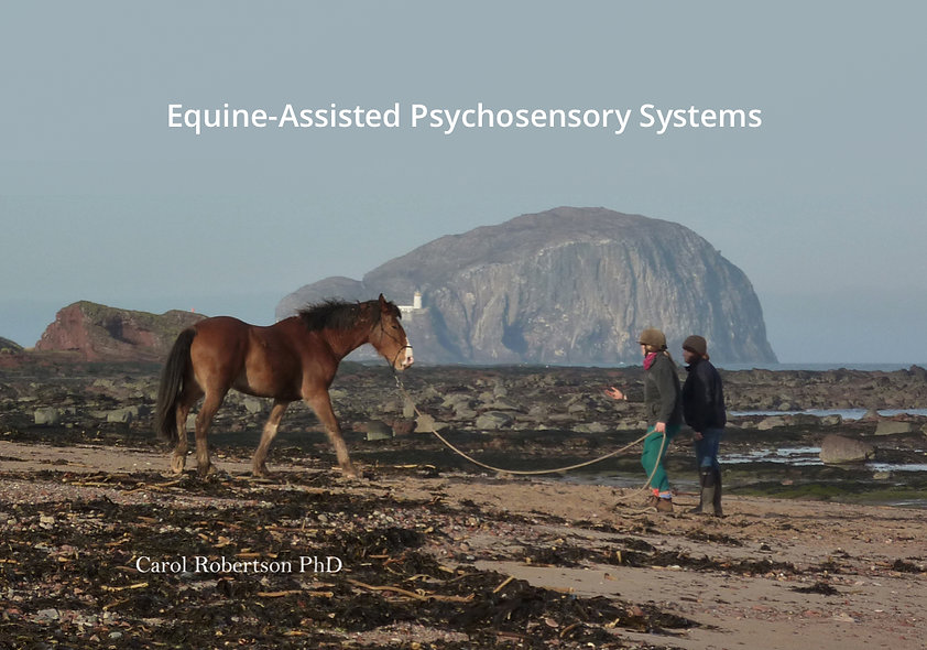 Equine-assisted Psychosensory Solutions
