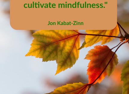 Mindfulness Mondays-Something Worth Paying Attention To