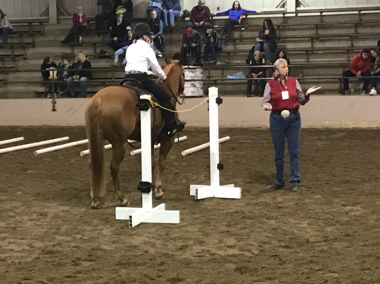 Equine Affair rider, Columbus, Ohio