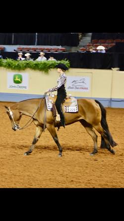 Rhegen in horsemanship Youth World