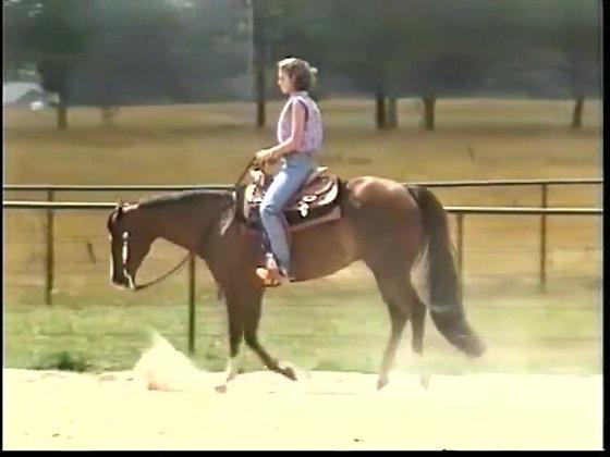 Horsemanship 1: Fundamentals of Excellence
