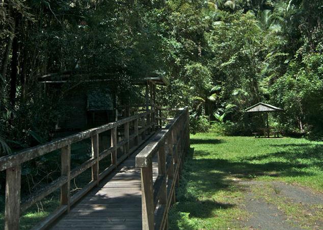 terania-creek-picnic-area.jpg