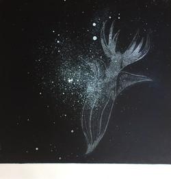 Sea Angel # 2 26.5 x 24.5 cm