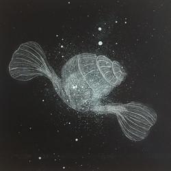 Sea angel - On the move 26.5 x 24.5 cm