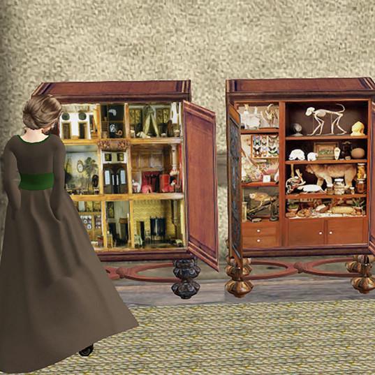 Cabinets of curiosites