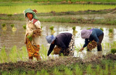 Cambodia143.JPEG