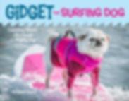 Gidget Cover S.jpg