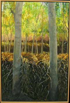 Asia Series: Bamboo China