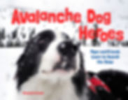 Avalanche Dog Heroes COVER 72.jpg