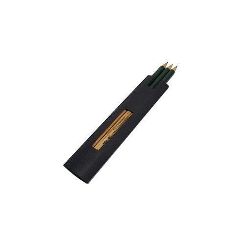 Lápis em Estojo de Color Plus
