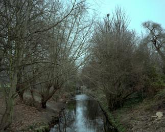 07_Ladywell Fields.jpg