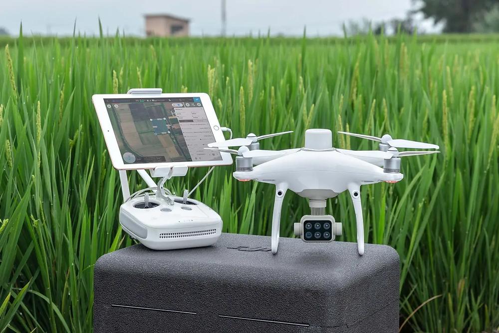 Servicii cu drone în agricultură în România cu phantom multispecral