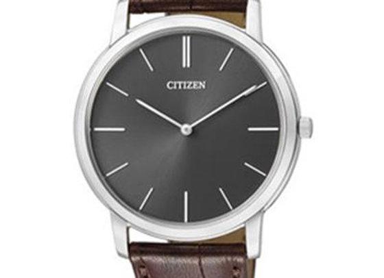 Montre Citizen AR1110-02H