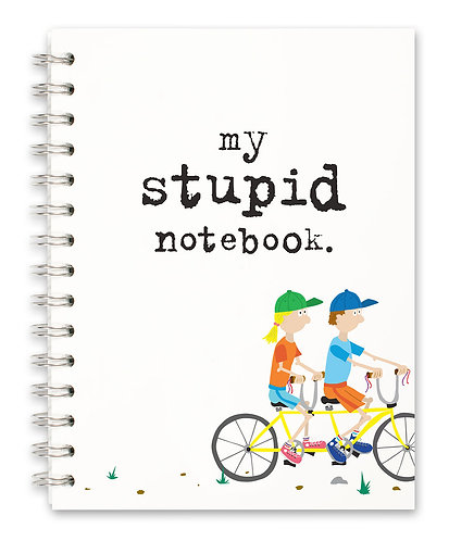My stupid notebook