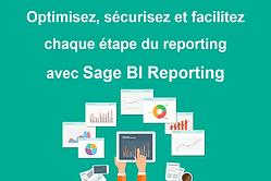 bi reporting.png