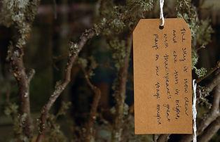 sonnet tree.jpg