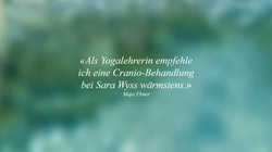 2_Referenz.png