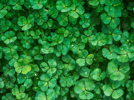 Host An Epic St. Patrick's Day Party