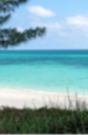 best-beach-grand-bahamas-lovely-william-