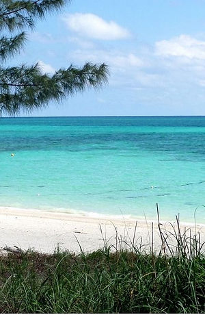 best-beach-grand-bahamas-lovely-william-