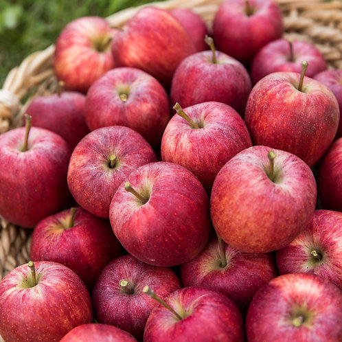 Äpfel aus regionalem Anbau