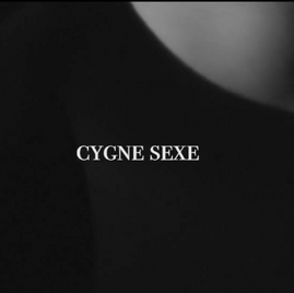CYGNE SEXE by Michael Quintanilla