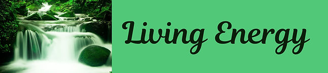 Living Energy NZ logo