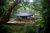 peaceful Japanese temple, stress relief healing