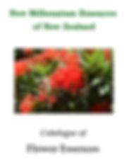 New Millennium Essences catalogue of flower essences