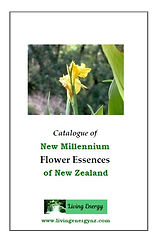 New Millennium Essences catalogue
