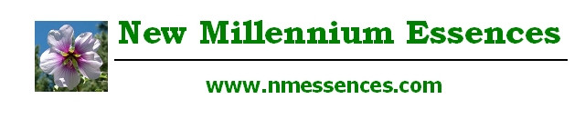 New Millennium Essences logo