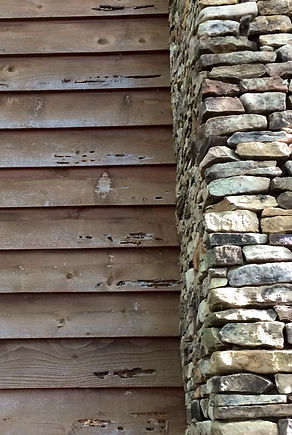 damage caused by woodpeckers seeking carpenter bee larvae