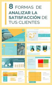plantilla_analisis_satisfaccion.png