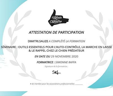 certificate_page-0001_edited.jpg