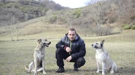 Les clubs canins, les comportementalistes, les éducateurs canins et leurs formations