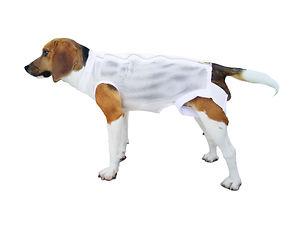 Beagle Jacket