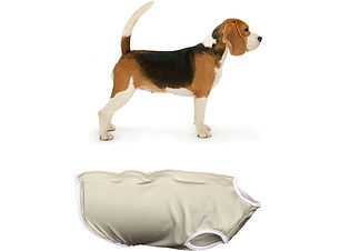 Beagle undershirt