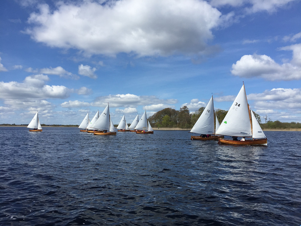 Water Wags Ireland - Lough Ree