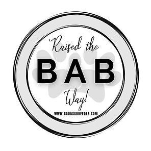 BaB Logo.jpg