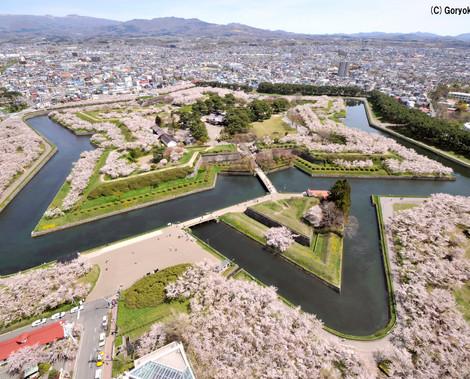Goryokaku_Park-1.jpg