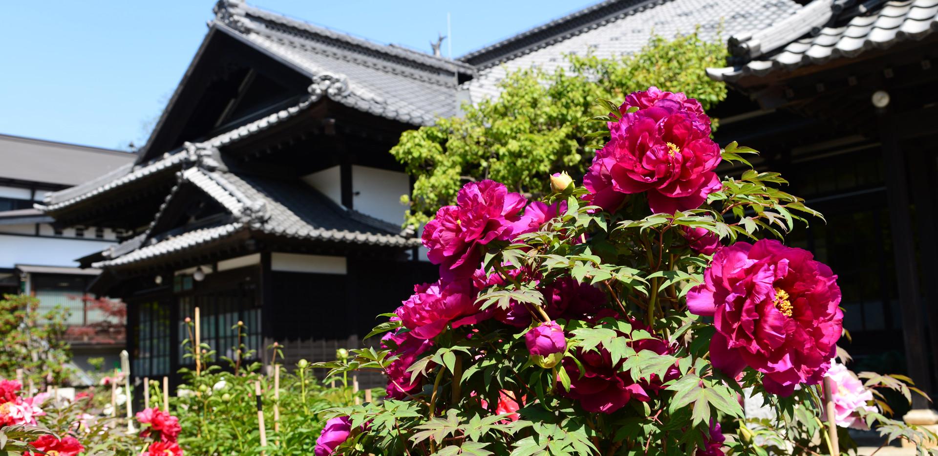 旧青山別邸.jpg