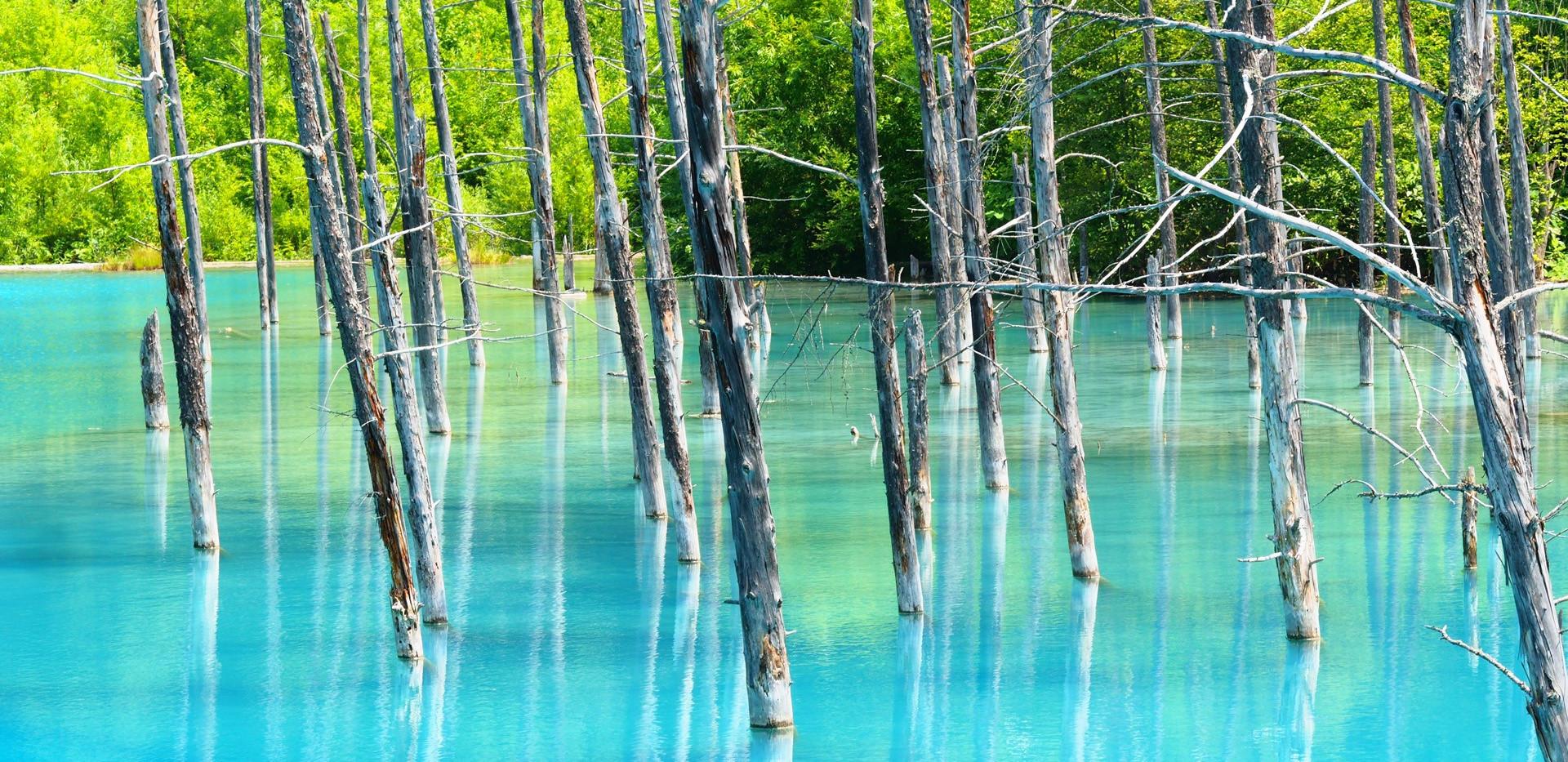 Shirogane Blue Pond.jpg