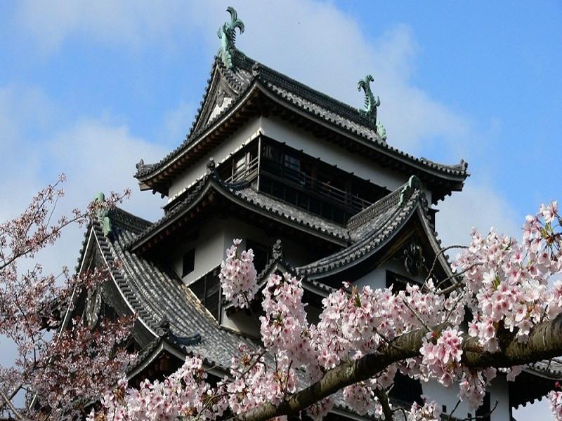 松江城2.jpg