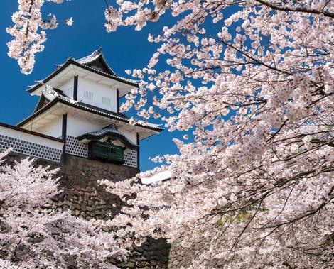 Kanazawa 4.jpg