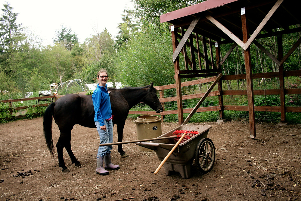 A helpful visitor ready to help clean up.  See?  Two manure rakes!
