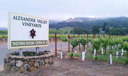 alexander valley.jpg