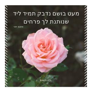 פרחים (2).png